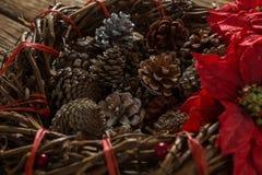 Stäng sig av konstgjort rede med sörjer upp kottar, och julstjärnan blommar fotografering för bildbyråer