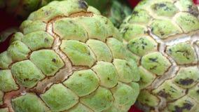 Stäng sig upp av äpplet för sockeräpplecustard Royaltyfria Bilder