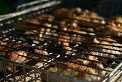 Stäng sig upp av att laga mat läcker kebab på gallret av fega vingar Royaltyfri Fotografi
