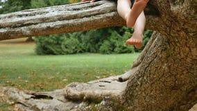 Stäng sig upp av ben av den aktiva flickan som sitter på trädfilial i, parkerar lite under sommardag arkivfilmer