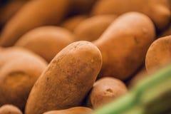 Stäng sig upp av bruna potatisar i marknad royaltyfri fotografi
