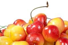 Stäng sig upp av Cherry Arkivbilder