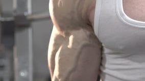 Stäng sig upp av demonstration av sportdeadlift av den starka mannen med stor biceps stock video