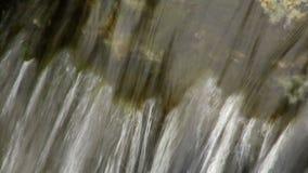 Stäng sig upp av den lilla vattenfallet och gröna växter i natur lager videofilmer