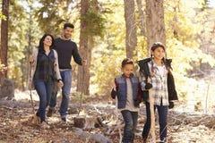 Stäng sig upp av den lyckliga latinamerikanska familjen som fotvandrar i skogen, slut upp Arkivbild