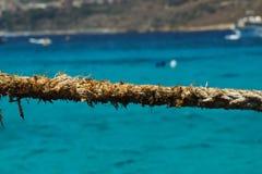 Stäng sig upp av det slitna repet på den blåa lagun, Comino, Malta royaltyfria bilder