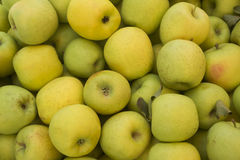 Stäng sig upp av en hög av söta nya mogna gröna äpplen skivad half ananas för bakgrundssnittfrukt äta som är sunt Nedgångskörd, Arkivbilder