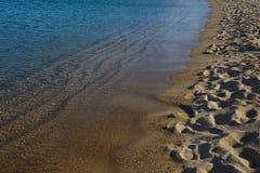 Stäng sig upp av en kust på en sandig strand Arkivfoto