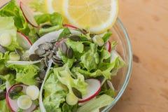 Stäng sig upp av en läcker sund vegetarisk grönsallatsallad, med den röd och vit rädisan, vårvitlök, citronskivor och basilika Arkivfoto