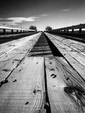 Stäng sig upp av en träbro i svartvitt Royaltyfria Foton