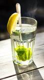 Stäng sig upp av ett exponeringsglas av tea med en ny pepparmint Royaltyfria Foton