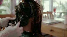Stäng sig upp av färga för hår stock video