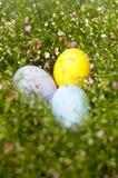 Stäng sig upp av färgrika påskägg i Gypsophilabakgrund Arkivbild
