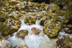 Stäng sig upp av floden Lepenjica i hjärtan av den Lepena dalen, Slovenien arkivbilder