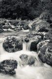 Stäng sig upp av floden Lepenjica i hjärtan av den Lepena dalen, Slovenien arkivfoton