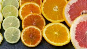 Stäng sig upp av grapefrukten, apelsinen, citronen och limefrukt arkivfilmer