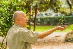 Stäng sig upp av mannen som använder en hand som rymmer och att bry sig en ung grön växt och att plantera trädet som växer ett tr Arkivbilder