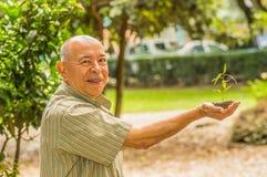 Stäng sig upp av mannen som använder en hand som rymmer och att bry sig en ung grön växt och att plantera trädet som växer ett tr Royaltyfri Foto