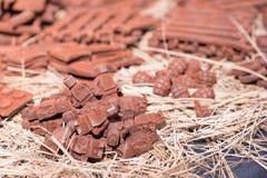 Stäng sig upp av mycket små robotar som göras av utomhus- choklad på matfestiv Royaltyfria Bilder