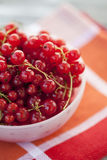 Stäng sig upp av röda vinbär i en bunke Royaltyfria Bilder