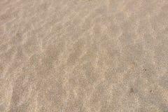 Stäng sig upp av sand på en strand, bakgrund för sandig strand Royaltyfri Bild