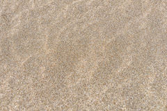 Stäng sig upp av sand på en strand, bakgrund för sandig strand Royaltyfri Fotografi