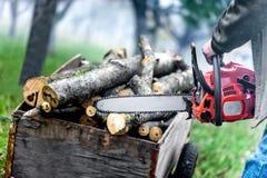 Stäng sig upp av skogarbetaren, skogsarbetare med chainsawen Royaltyfri Fotografi