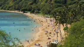 Stäng sig upp av stranden på hanaumafjärden i hawaii stock video