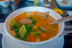 Stäng sig upp av traditionell Nepali och sund soppa som tjänas som i en vit bunkeplatta i Nepal Royaltyfri Bild