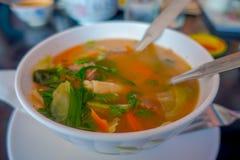 Stäng sig upp av traditionell Nepali och sund soppa som tjänas som i en vit bunkeplatta i Nepal Royaltyfria Bilder