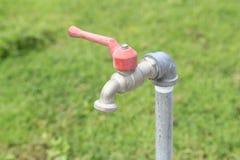 Stäng sig upp av vattenvattenkranen med selektiv bakgrund för grönt gräs - Arkivfoto