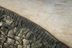 Stäng sig upp av wood och intakt vitt trä för svart som bränns Naturligt mönstra arkivbild