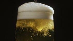 Stäng sig upp bakgrund av hällande öl med bubblor och skum i exponeringsglas lager videofilmer