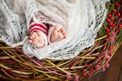 Stäng sig upp bild av nyfött behandla som ett barn fot, jultid Arkivbild