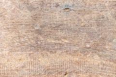 Stäng sig upp den wood plankaväggen från gamla paneler, wood textur/wood lodisar Royaltyfri Foto