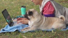 Stäng sig upp flickan som lägger och skriver på bärbara datorn på en gräsmatta med hennes mops omkring stock video