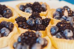 Stäng sig upp fotoet av skvallerbyttor med blåbäret och björnbäret Arkivfoton