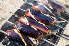 Stäng sig upp grillad helg för ny luft för brand för aubergineBBQ öppen Royaltyfri Foto