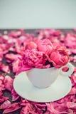 Stäng sig upp ljust - den rosa pionblommabuketten i en dekorativt kopp och tefat på mörk bakgrund med pionkronblad Förälskelsegåv royaltyfri fotografi