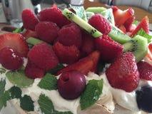 Stäng sig upp makroen som skjutas av jordgubbar och kiwi för fruktsallad Arkivbild