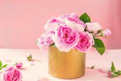 Stäng sig upp mjuk bukett för rosor för rosa te i guld- kruka för tappning på den rosa bakgrunden Vykortåtlöje upp Sommar vårblom royaltyfri fotografi