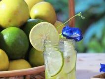 Stäng sig upp ny hemlagad lemonad som dekoreras med skivad limefrukt och royaltyfria foton