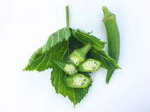 Stäng sig upp nytt Abelmoschus esculentus på det gröna bladet och skiva på vit bakgrund Royaltyfri Fotografi