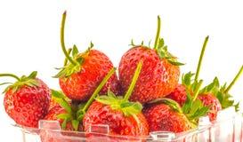 Stäng sig upp röda jordgubbar i plast- ask på vit bakgrund Fotografering för Bildbyråer