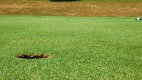 Stäng sig upp skott av golfputten på härlig golfbana stock video
