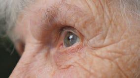 Stäng sig upp ståenden av den gamla kvinnan som ser upp Ögon av en äldre dam med skrynklor runt om dem Ultrarapid för sidosikt arkivfilmer