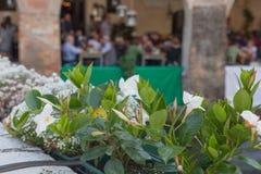 Stäng sig upp vita blommor med suddigt folk i bakgrunden Royaltyfri Fotografi