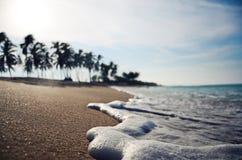 Stäng sig upp wave på en tropisk strand dof Arkivbild