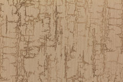 stäng skjuten textur upp wallpaperen Royaltyfri Bild