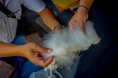 Stäng upp av ett maninnehav i hans hand per stycke av ull som arbetar på för whoolsjal för vävstol fabriks- kläder i Nepal Royaltyfri Bild